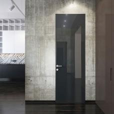 Дверь со стеклянными глянцевыми панелями